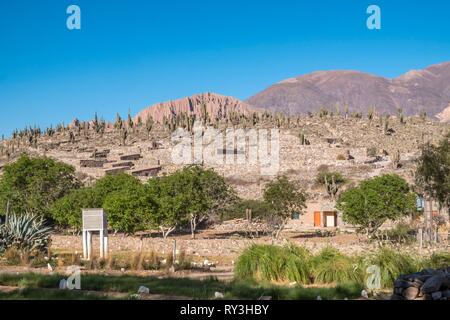Argentina, Jujuy province, Quebrada de Humahuaca listed as World Heritage by UNESCO, Tilcara, View of the Pucara de Tilcara, pre-Inca fortification ruins, now museum - Stock Image