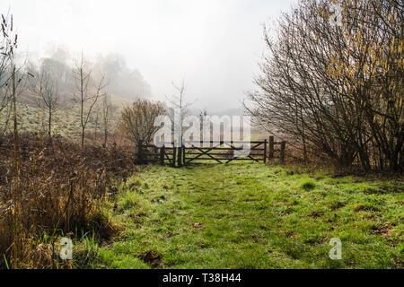 Sunshine trying to break through the afternoon mist Herefordshire England UK  February 2019. - Stock Image