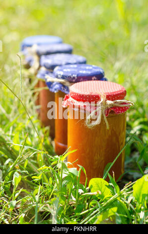 Glass jars with different kinds of jam,on green natural background - Stock Image
