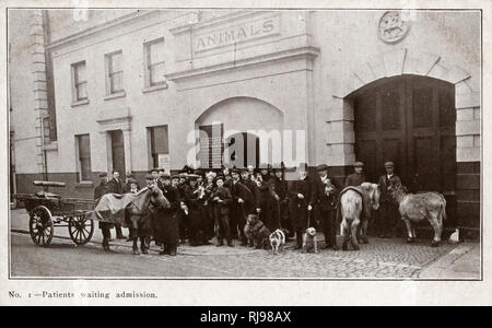Queues waiting for admission at the animal dispensary for the poor: Our Dumb Friends League at Victoria, London. (Later named The Blue Cross) - Stock Image