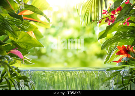 Tropical palm leaves,flower and small waterfall - Stock Image