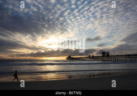 USA Stock photo of a sunset at the beach.This young visitor was captured on Oceanside Beach, by the pier, in Southern - Stock Image