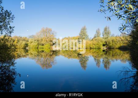 Lake reflections of trees Milton park Cambridge 10/11/2018 - Stock Image