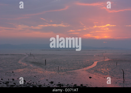A path out to oyster beds during low tide. Jincheng, Kinmen county, Taiwan - Stock Image