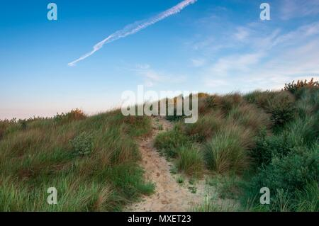 A sandy path leading through the grass on a sand dune in the south of England - Stock Image