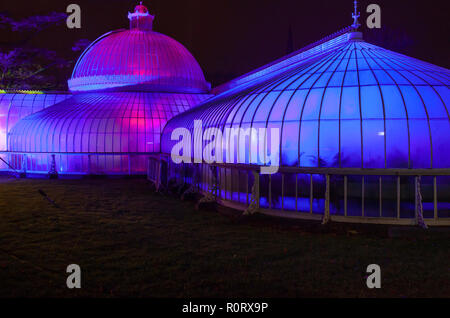 Rear of the Kibble Palace, illuminated with coloured lights, at GlasGLOW, where the Botanic Gardens are lit up at night. Scotland. - Stock Image