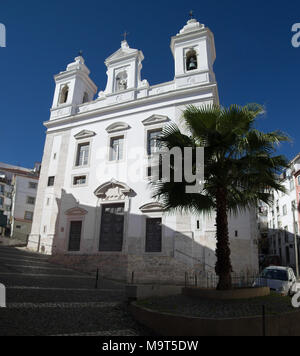 San Miguel church behind a palm tree and cobblestone streets in Alfama disctrict, the most famous and ancient typical neighborhood of Lisbon. Portugal - Stock Image