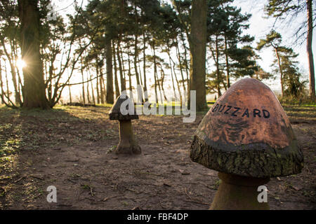 Wooden Carvings in the Woods - Stock Image