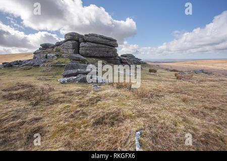 Rowtor Dartmoor national Park Devon Uk - Stock Image
