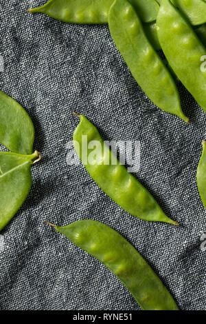 Raw Green Organic Snow Peas Ready to Eat - Stock Image