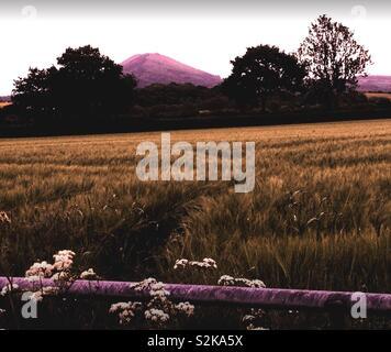 Shropshire Countryside - The Wrekin - Stock Image