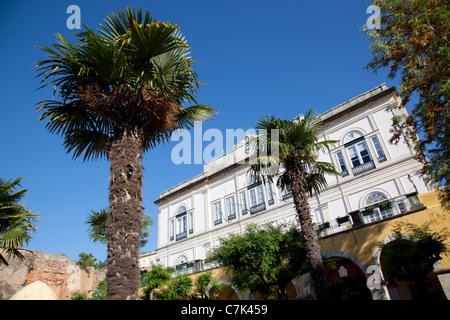 Portugal, Algarve, Silves, Town Hall Garden - Stock Image