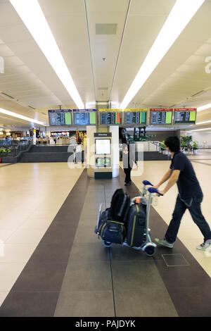 passenger with bags and trolley with flight arrivals information screens in Singapore Changi Terminal2 - Stock Image