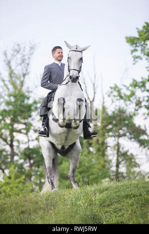 Pure Spanish Horse, Andalusian. Blind gelding performing a pesade with its rider and owner Sandro Huerzeler. Switzerland - Stock Image