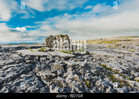 Heavily weathered limestone pavement at Poulsallagh near the Atlantic Coast of the Burren, County Clare, Ireland - Stock Image