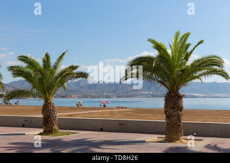 Puerto de Mazarron beach Murcia Spain with palm trees blue sky and sea - Stock Image