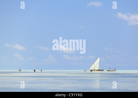 Fishermen at low tide, Jambiani, Zanzibar - Stock Image