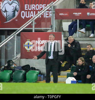Belfast, UK. 21st Mar 2019. National Football Stadium at Windsor Park, Belfast, Northern Ireland. 21 March 2019. UEFA EURO 2020 Qualifier- Northern Ireland v Estonia. Action from tonight's game. Northern Irland manager Michael O'Neill. iCredit: David Hunter/Alamy Live News. - Stock Image
