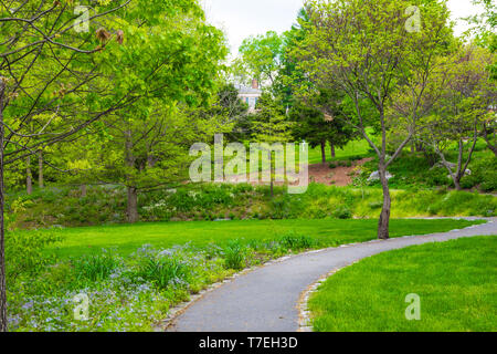 JONESBOROUGH, TN, USA-4/28/19: A colorful, green city park with a serpentine walking path and purple wildflowers. - Stock Image