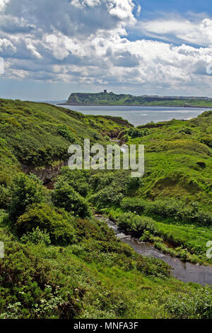 In England's green and pleasant land. Summer sunshine lights Scalby Beck as it flows into Scarborough's North Bay. - Stock Image