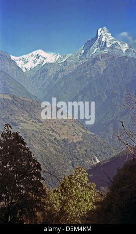 Machhapuchhre with Annapurna III and Gangapurna in the distance from Kimrong Khola on Annapurna ciruit Nepal Himalayas - Stock Image