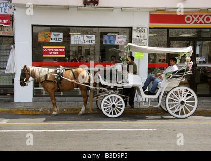 Horse and Carriage Taxi, Merida, Yucatan Peninsular, Mexico. - Stock Image