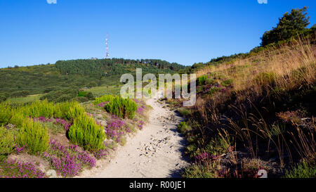 Camino de Santiago (Spain) - Along the way of St.James in the Bierzo landscape - Stock Image