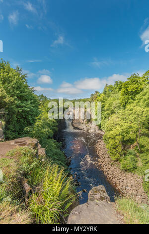 High Force Waterfall, Teesdale, North Pennines AONB, UK as seen from the Pennine Way long distance footpath in early summer sunshine, with copy space - Stock Image