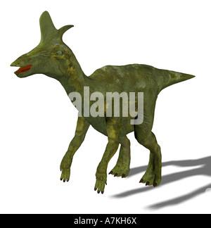 Lambeosaurus dinosaur - Stock Image