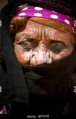 Elderly Bedouin woman at Moses Springs, Sinai Peninsula, Suez Canal, Egypt, Africa - Stock Image