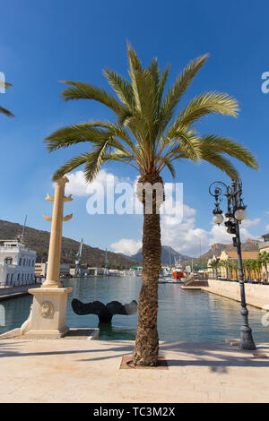 Cartagena Murcia Spain view of the port and palm trees - Stock Image