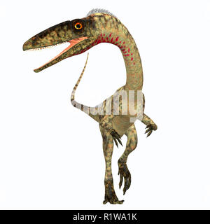 Coelophysis was a carnivorous theropod dinosaur that lived in the Triassic Period of North America. - Stock Image