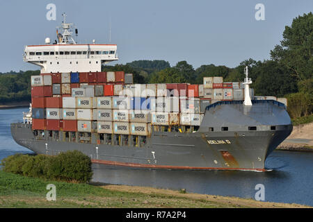 Containerfeeder Adelina D - Stock Image