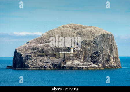 The Bass Rock from Tantallon Castle.  Near North Berwick, East Lothian, Scotland, UK - Stock Image
