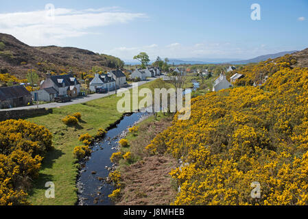 The small hamlet of Durinish near Plocton in the month of May swamped by yellow gorse and broom on the west coast - Stock Image