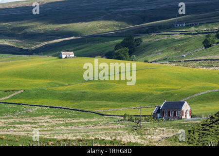 Teesdale, County Durham, UK.  6th June 2019. UK Weather.  After several days of heavy showers the sun breaks through in the North Pennines.  This creates ideal conditions for the traditionally managed upland wild flower hay meadows of Upper Teesdale to come into flower.  Credit: David Forster/Alamy Live News - Stock Image