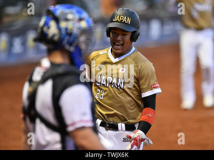 Havlickuv Brod, Czech Republic. 16th June, 2019. ***CAPTION CORRECTION: CORRECTED CITY IN THE CAPTION*** R-L SEII KUROIWA (JPN) and DAVID MERTL (CZE) are seen during the Men's Softball World Championship 2019 match Czech Republic vs Japan in Havlickuv Brod, Czech Republic, on June 16, 2019. Credit: Lubos Pavlicek/CTK Photo/Alamy Live News - Stock Image