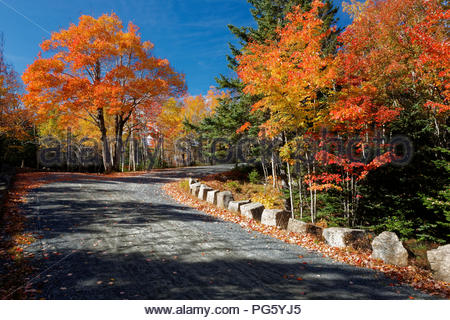 Carriage road in the Autumn, Acadia National Park, Maine - Stock Image