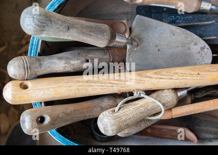 A selection of trowels and garden tools in a trug - Stock Image