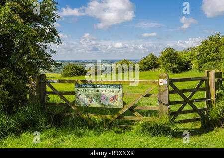 Red Hill Nature Reserve,  Lincolnshire wolds - Stock Image