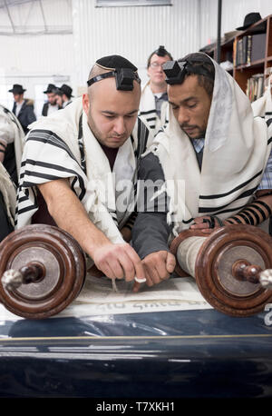During morning prayer services, a man called to the Torah is shown where the reading will begin. In Cambria Heights, Queens, New York. - Stock Image
