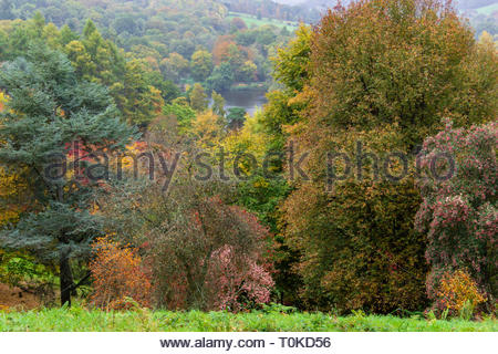 Winkworth Arboretum - Stock Image