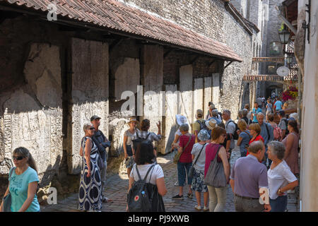 Baltic tourism summer, tourists view huge medieval tombstones fixed to a wall in Katarina kaik in the Old Town area of Tallinn, Estonia. - Stock Image