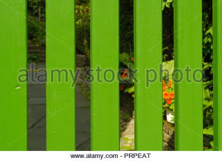 Green wooden gate and secret garden - Stock Image