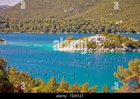 Sea shell oyster farm in Ston bay, Dalmatia region of Croatia - Stock Image