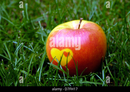 Apple, apples with heart, on meadow, grass - Stock Image