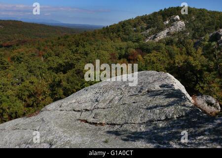 Tree and cliffs Shawangunk Mountains, The Gunks New York - Stock Image