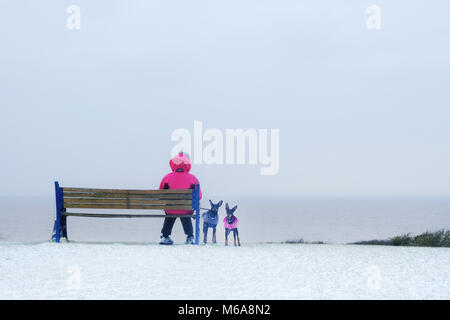 Portishead, Somerset, UK. 2nd March, 2018. UK Weather, Portishead, N. Somerset, UK  Storm Emma left deep snow drifts - Stock Image