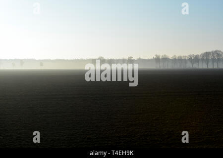 Morning spring landscape with newly plowed field, farmland in  Netherlands in Europe - Stock Image