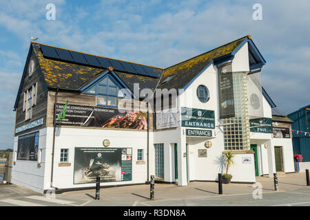 The National Lobster Hatchery, a modern visitor centre in Padstow, Cornwall, England - Stock Image